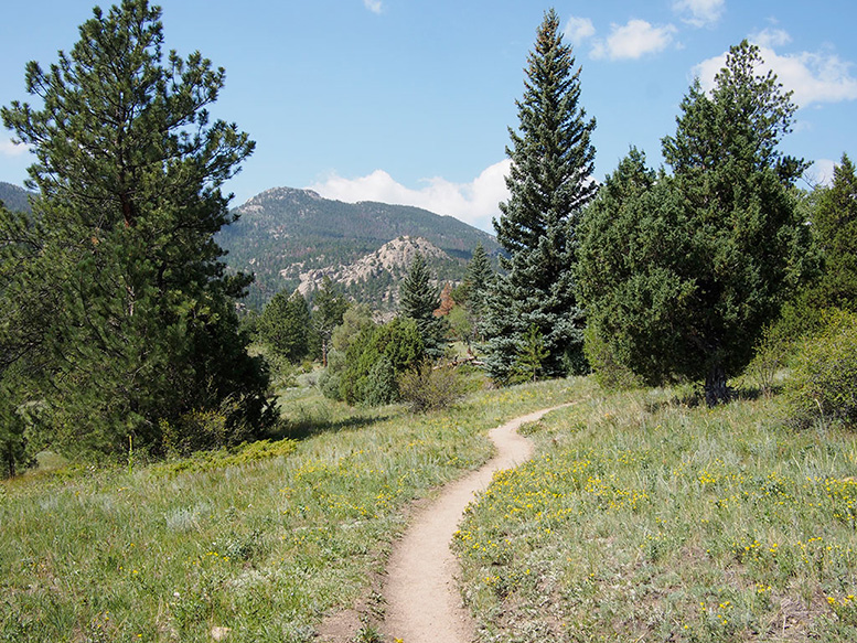 Trail winding up Cow Creek valley by Toshen